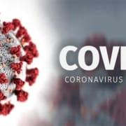 covid 19 coronavirus disease 2019