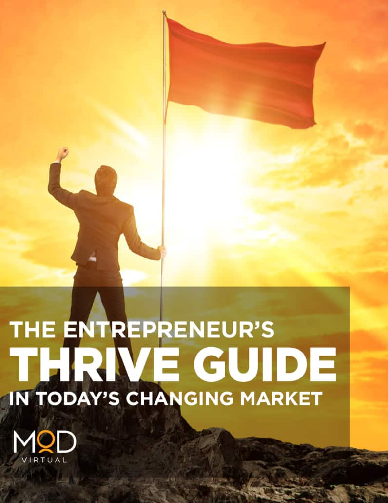 thrive guide the entrepreneur's thrive guide in today's changing market book cover